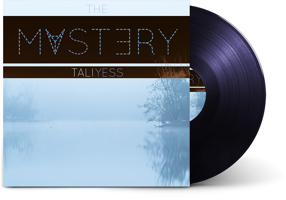 The Mystery by Tali Yess
